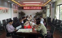 湘潭市岳塘区人大霞城代表小组注重实效开展活动