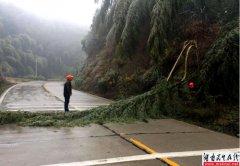 湘潭市公路管理局 全力应对低温冰冻天气保畅通